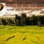 Random image: EthiopisBalloonFieldAd