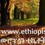 Random image: cropped-EthiopisForestSunshineAd.jpg