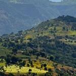Random image: cropped-EthiopisWukilinaAirTicket-Ads.jpg