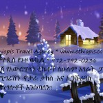 Random image: EthiopisWinterTreeHomeAd