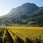 Random image: franschhoek-vineyards-south-africa-GettyImages-200157099-001
